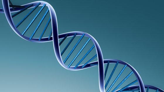 Rzadkie genetyczne zaburzenie pozwala lepiej zrozumieć schizofrenię